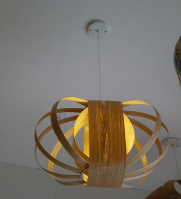 点睛木饰照明木花灯,**的木皮吊灯Wooden Crab Pendant lamp super design lamp